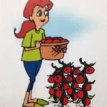 Seed Lady